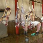 Abattoirs to be moved near airports