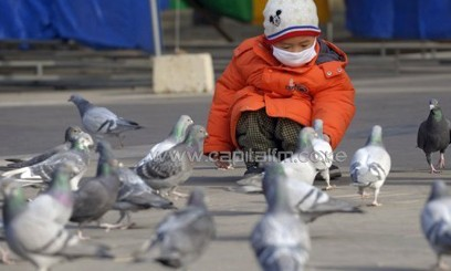 A child's mouth covered as he plays with pigeons/FILE
