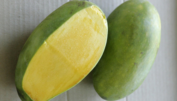 Pair of Japanese mangoes/AFP