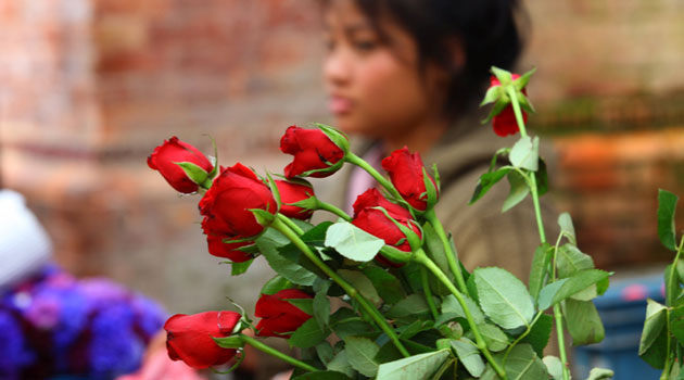 Kenya Flower Council  chief executive Jane Ngige says the sector is confident of making 30 percent of its sales this year, on Valentine's Day only/XINHUA-File