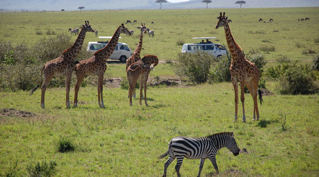 TOURISM KENYA - Kenya's debt is sustainable – StanChart economist