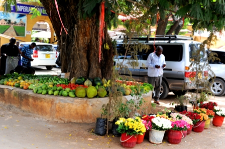 Touring in a Tuk Tuk in Malindi photographed by Susan Wong 2011 - fruit stand