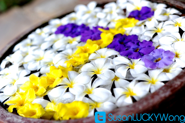 tulia spa sarova whitesands flowers photographed by susan wong 2012