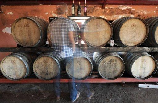 morocco wines 1