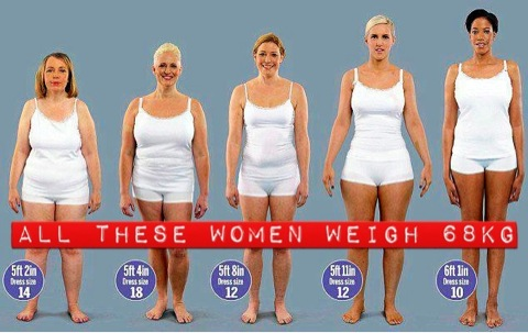 Womens body fat percentage pictures