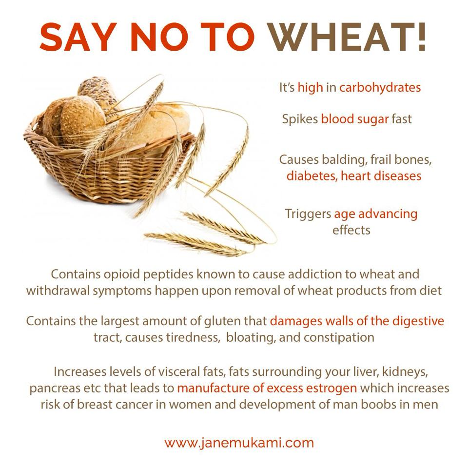 Why wheat is bad for you