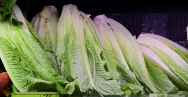 FDA believes California lettuce sparked E-Coli outbreak""