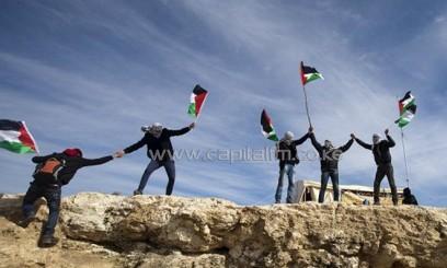 Protestors wave Palestinian flags/AFP