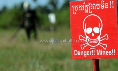 A deminer scans for mines in Oudong, some 40 km north of Phnom Penh, on November 27, 2011/AFP