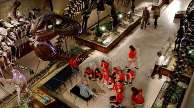 File picture fo illustration shows visitors at a dinosaur display room at the Carnegie Museum of Natural History in Pittsburgh, Pennsylvania, on May 13, 2004/AFP