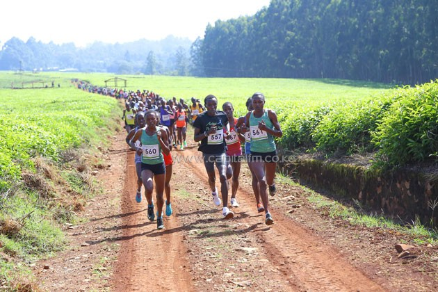 Sheila Chepkirui (no.561), Fancy Chemtai (no.557) and Sheila Chelangat (no.560) who finished number 1,2,3 respectively, commanding the Safaricom Kericho 10km run through the vast tea estates in the region.